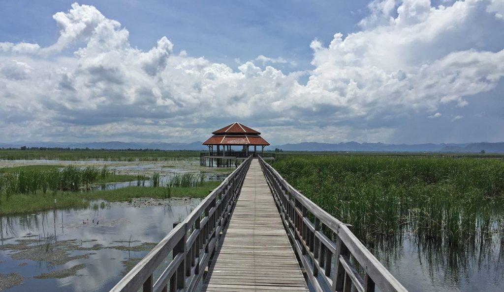 Wasservögel im Nationalpark Khao Sam Roi Yod - Thailand