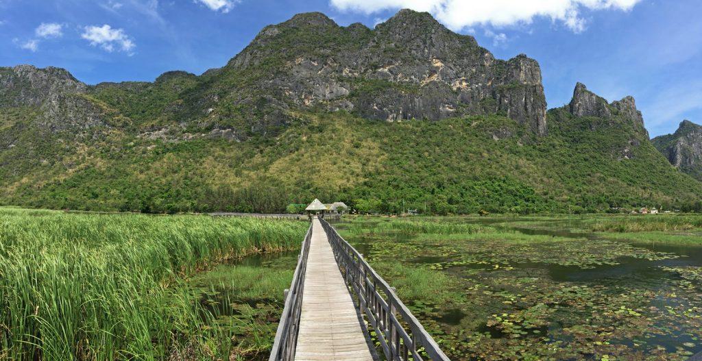 Hölzerne Laufstege im mit Blick auf die Berge des Nationalparks