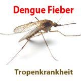 Dengue Fieber Thailand