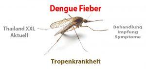 Dengue Fieber Thailand - Behandlung - Impfung