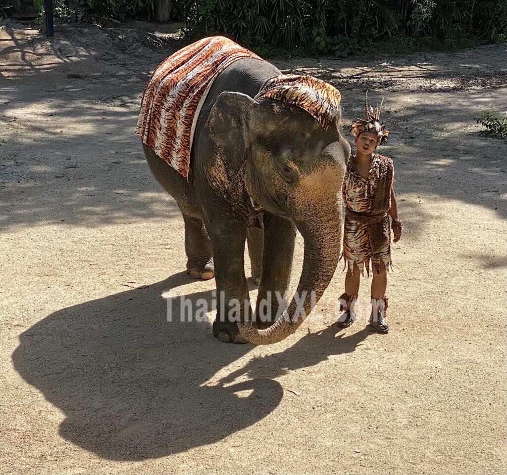 Show im Elefantendorf Pattaya